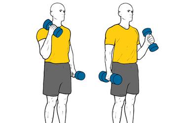 Curl de biceps alterno con mancuernas de pie agarre tipo martillo