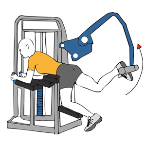 HIP EXTENSION MACHINE