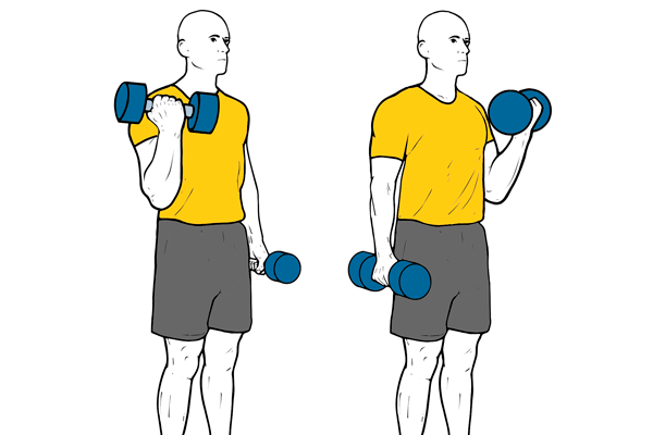 Alternating dumbbell biceps curls