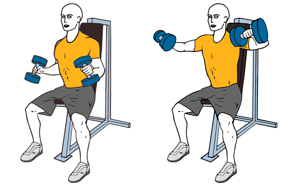 90 Degree dumbbell lateral raise