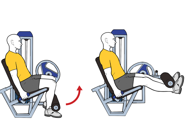 Seated machine leg extension