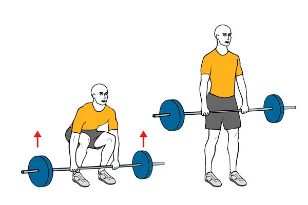 Barbell deadlift (Conventional)